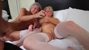 sally's maid provider